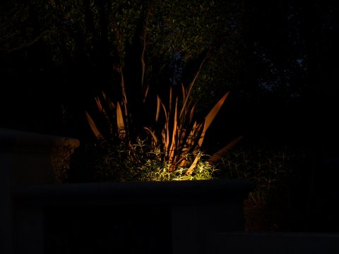 camarillo landscape lighting dramatic effect