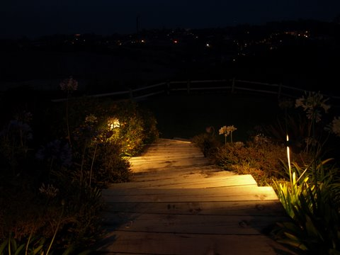 camarillo landscape lighting steps